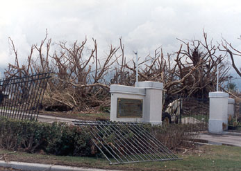 Aftermath of Hurricane Andrew