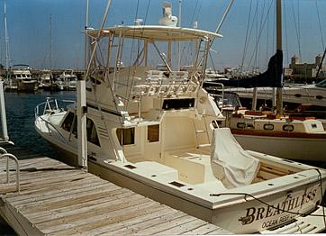 Boat Review by David Pascoe - Blackfin 32 Flybridge